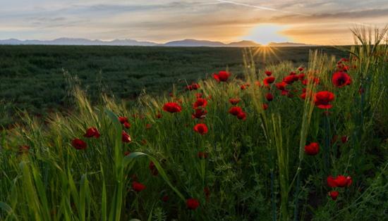 Du lịch Azerbaijan 4 mùa trong năm